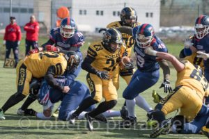 Terni Steelers